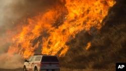 Un incendie ravage les paysages, à Keenbrook, Californie, le 17 août 2016.
