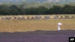 资料照:环法自行车赛的选手正在通过法国普罗旺斯的一片薰衣草花地。(2017年7月21日)