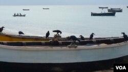 印尼海边渔船。印尼称,外籍船只的非法捕捞,致使其渔业每年蒙受超过200亿美元的损失。(美国之音朱诺拍摄,2016年3月6日)