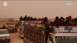 Ликвидация остатков ИГИЛ в Дейр-эз-Зоре