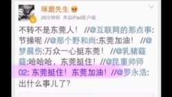 时事大家谈:北京打虎终难落幕,东莞扫黄又为那桩?