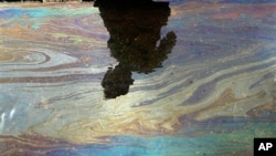 Oil sheen on water in gulf.