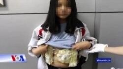 Việt Nam hứa 'bảo hộ công dân' cho thiếu niên buôn lậu ngà voi bị TQ bắt