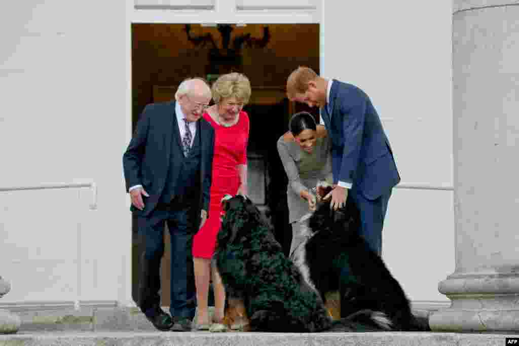 Britain's Prince Harry (R) and wife Meghan (2R), Duke and Duchess of Sussex greet the dogs of Ireland's President Michael Higgins and wife Sabina on arrival at the Presidential mansion on the second day of their visit in Dublin.