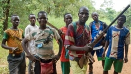 "FILE -  fighters from a Christian militia movement known as the ""anti-balaka"" display their makeshift weaponry in the village of Boubou, between the towns of Bossangoa and Bouca, Central African Republic."