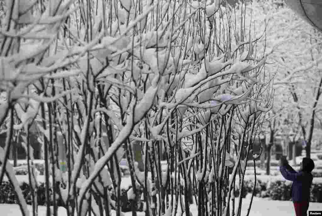 Công viên phủ tuyết tại Bắc Kinh.