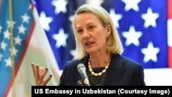 امریکہ کی نمائندہ خصوصی برائے جنوبی ایشیا ایلس ویلز