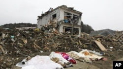 The bodies of victims are covered by blankets at a village destroyed by the earthquake and tsunami in Rikuzentakata in Iwate prefecture, northeast Japan March 15, 2011