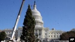 工人们在国会大厦前安置圣诞树
