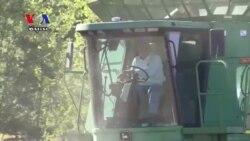 As Farmers Harvest, Tariff Concerns Loom
