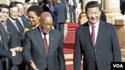 2일 남아프리카공화국 수도 프리토리아에 도착한 시진핑 중국 국가주석(오른쪽)이 제이콥 주마 남아공 대통령의 안내를 받고 있다.