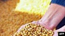 Moguća nova kriza sa cenama hrane