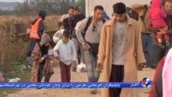 وزیر کشور اتریش: تقریبا همه پناهجویان قصد اقامت در آلمان را دارند