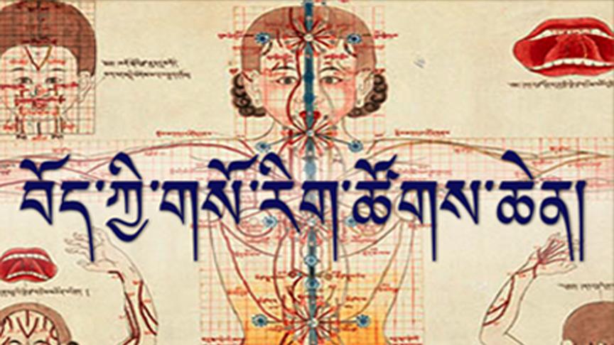 International Conference on Tibetan Medicine