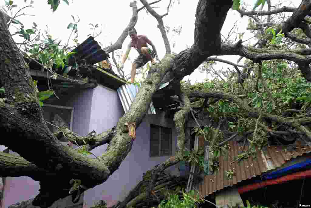 A man climbs on a fallen tree which damaged four houses in Rosario, July 18, 2014.