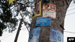 Elections campaign posters are plastered on a tree on May 15, 2014, in Zomba ahead of Malawi's Tripartite Elections.