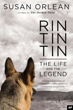 """Rin Tin Tin: The Life and the Legend"" looks into the life of the dog that because a huge US star after being rescued from a French battlefield."