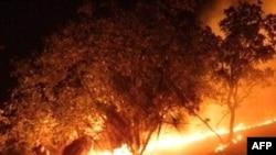 ტყის ხანძრები ბირთვულ საფრთხეს ქმნის