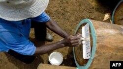 Nhân viên của 1 công ty giám sát của Thụy Sĩ đánh dấu gỗ được khai thác