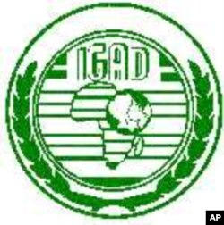 IGAD Incapable of Resolving Somali Crisis, Says Analyst