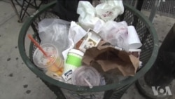纽约的垃圾都去哪儿了?