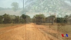 Retour sur l'attaque de Boffa au Sénégal (vidéo)