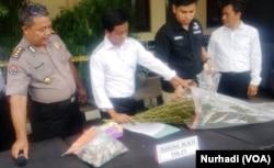 Polisi memberikan keterangan terkait kasus peredaran ganja di Yogyakarta. (Foto:VOA/ Nurhadi)