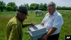 Antal Matyus, izquierda, vota mientras el funcionario electoral Bela Deak sostiene una urna móvil durante las elecciones para el Parlamento Europeo en su granja en Szentkiraly, Hungría, el domingo 26 de mayo de 2019. (Sandor Ujvari/MTI vía AP)