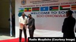 Madaxweyne Xasan iyo Ra'iisul Wasaare Hailemariam