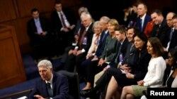 戈萨奇在参议院司法委员会作证(2017年3月22日)