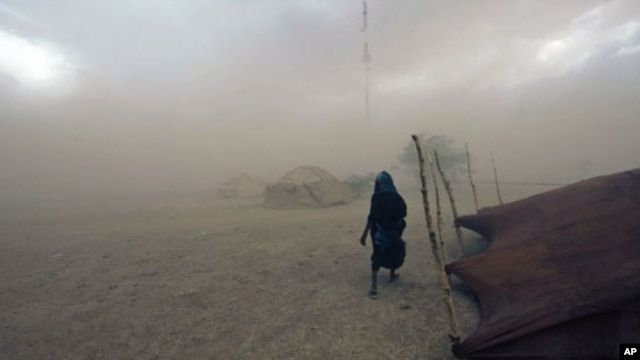 A Tuareg woman walks during a sandstorm in Ingal, Niger, September 18, 2011.
