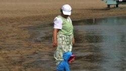 Волонтеры убирают прибрежные воды
