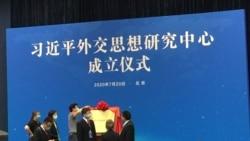 外交新局还是困局?北京逆势推习进平外交思想