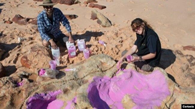 Los científicos han usado drones para grabar zonas de difícil acceso donde se han encontrado algunas de las pisadas de dinosaurio más grandes del mundo.