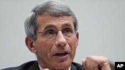 National Institute of Allergy and Infectious Diseases Director Anthony Fauci testifies on Capitol Hill in Washington, Sept. 29, 2009.