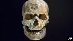 Hộp sọ 28.000 năm tuổi của người hiện đại Homo sapien tìm thấy ở Dordogne, Pháp tại viện bảo tàng ở Paris, Pháp, ngày 14/10/2015.