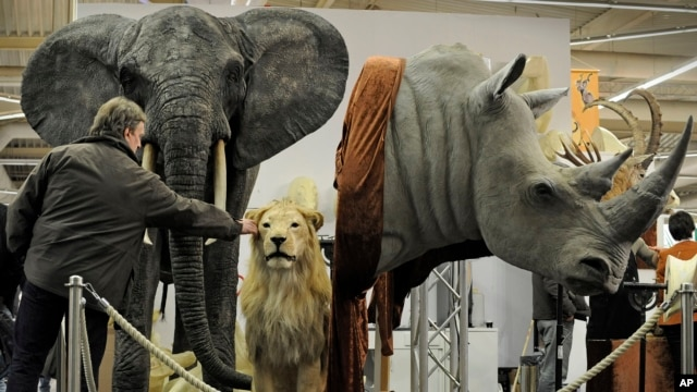 FILE - Big-game trophies abound at an international hunting fair in Dortmund, Germany.