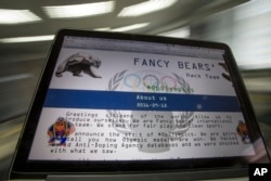 A screenshot of the Fancy Bears website fancybear.net seen on a computes screen in Moscow, Russia, Sept. 14, 2016.