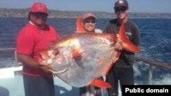 بزرگی ماه ماهی را می توان از روی این عکس سنجید