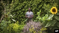 This photo provided by Stephen Zeigler shows Ron Finley in a garden in Los Angeles. Interest in gardening has grown around the country. Urban gardeners say it's particularly important for the health and resiliency of city neighborhoods. (Stephen Ziegler via AP)
