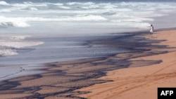 В США волонтеры пытаются защитить пляжи от нефтяного прибоя
