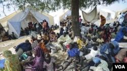 Ribuan warga melarikan diri dari rumah mereka di Kordofan selatan dan berlindung di komplek PBB di Sudan (foto: dok).