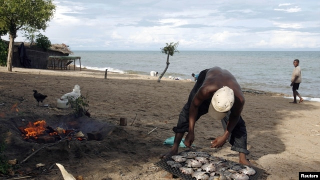 A fisherman prepares fish beside Lake Malawi, 120 km (75 miles) east of the capital Lilongwe, Malawi, April 3, 2009.