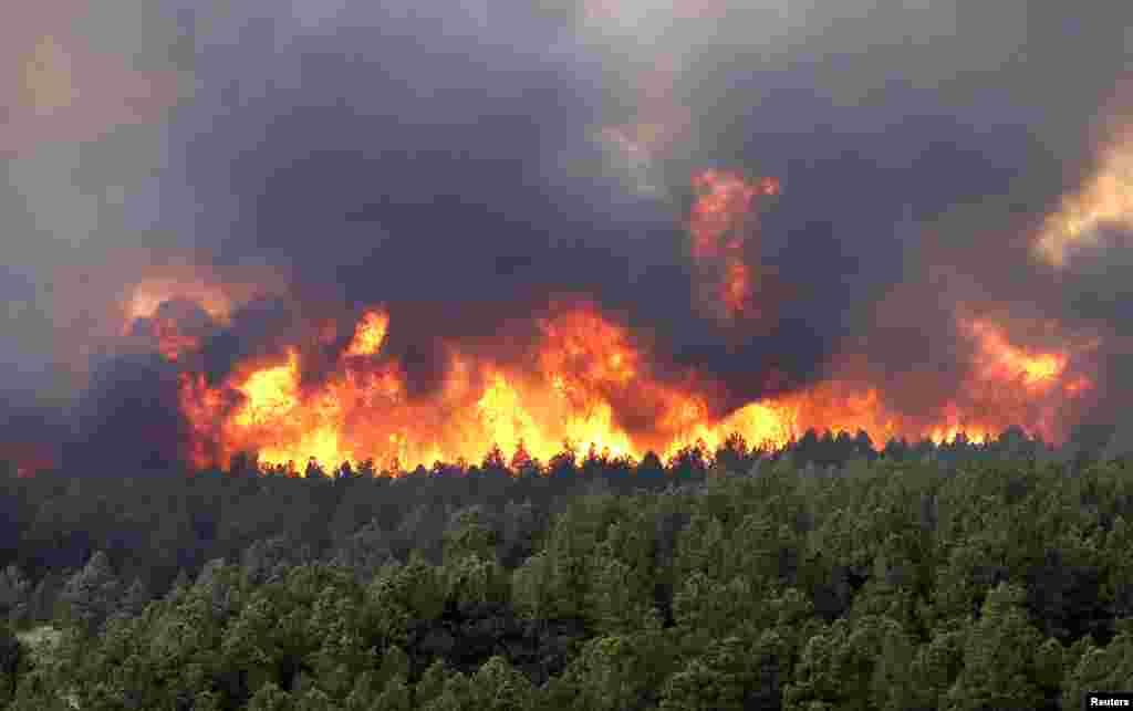 آگ بجھانے کی کوششیں جاری ہیں لیکن تیز ہواؤں کے باعث اس پر قابو پانے میں مشکلات کا سامنا ہے۔