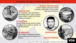 Funding Sources for Islamic State Groups