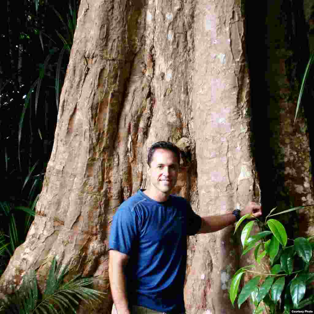 Ecologist Greg Asner leads the Carnegie Institution Spectranomics project to map canopy function and biological diversity throughout tropical forests of the world. (Robin Martin)