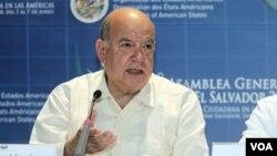 """El secretario general Insulza llamó a todos los sectores sociales y políticos paraguayos a """"respetar rigurosamente el clima democrático y de paz que ha alcanzado la región""""."""