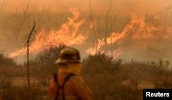 지난달 16일 미국 캘리포니아주 샌버나디노 국유림에 대형 산불이 발생해 8만여명의 주민에게 긴급대피령이 내려졌다. 진화 작업에 나선 소방관이 산불을 바라보고 있다.