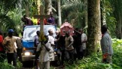 Au moins 17 civils ont été tués dans la localité de Erengeti dans une attaque des AFP à Erengeti, près de Beni