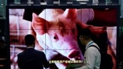 时事大家谈:端碗吃肉放筷骂娘,中国人往事不堪回首?